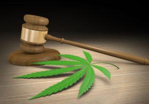 KCC, Author at Keystone Cannabis Coalition